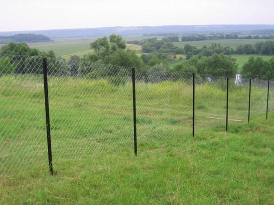 Натяжной забор на столбах